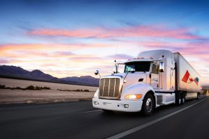 Conex Freight Forwarding – A Complete Package of Logistics and Transportation Services