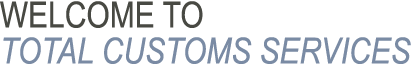Welcome to Total Customs Services Inc.