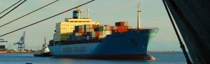Freight Company, Freight Forwarders & Shipping Company