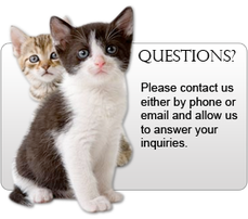 PawsNClaws Pet Transport -Pet Shipping And Animal Transport