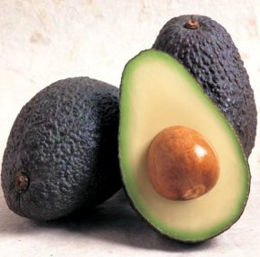 Learn All About Avocados, Whats Cooking America