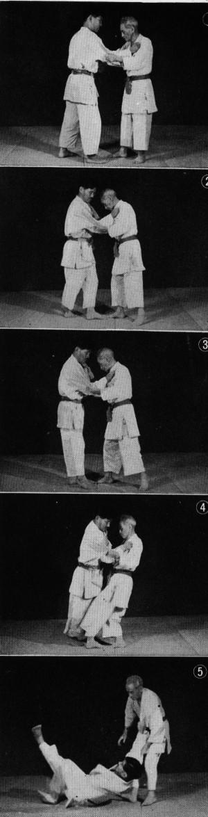 Te Ashi Do Ken Shin Shu Kan Karate Do Waza (Pepe Sensei Hanshi 10º Dan